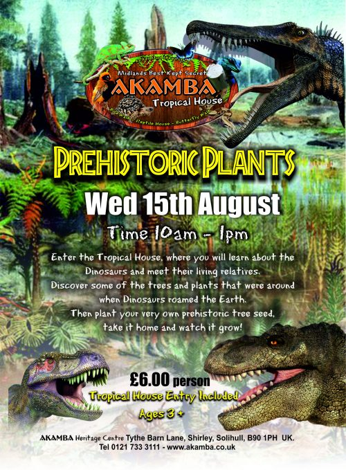 Wed 15th Aug